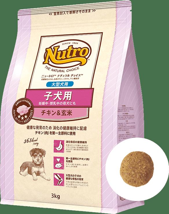 ナチュラル チョイス™大型犬用 [子犬用] チキン&玄米