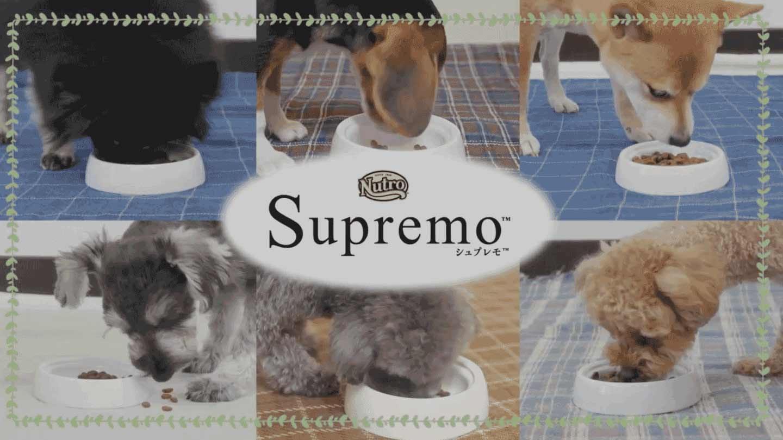 シュプレモ™ 4つのレシピシリーズ ドッグドライフード