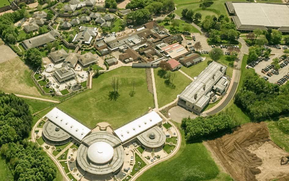 ウォルサム研究所